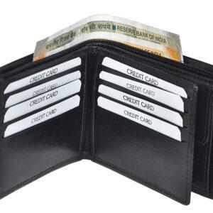 Johnson VT Leather Men's Wallet (Pack Of 1)
