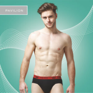 Viking Pavillion Multicolor Brief (Colors May Vary) (Pack Of 3)