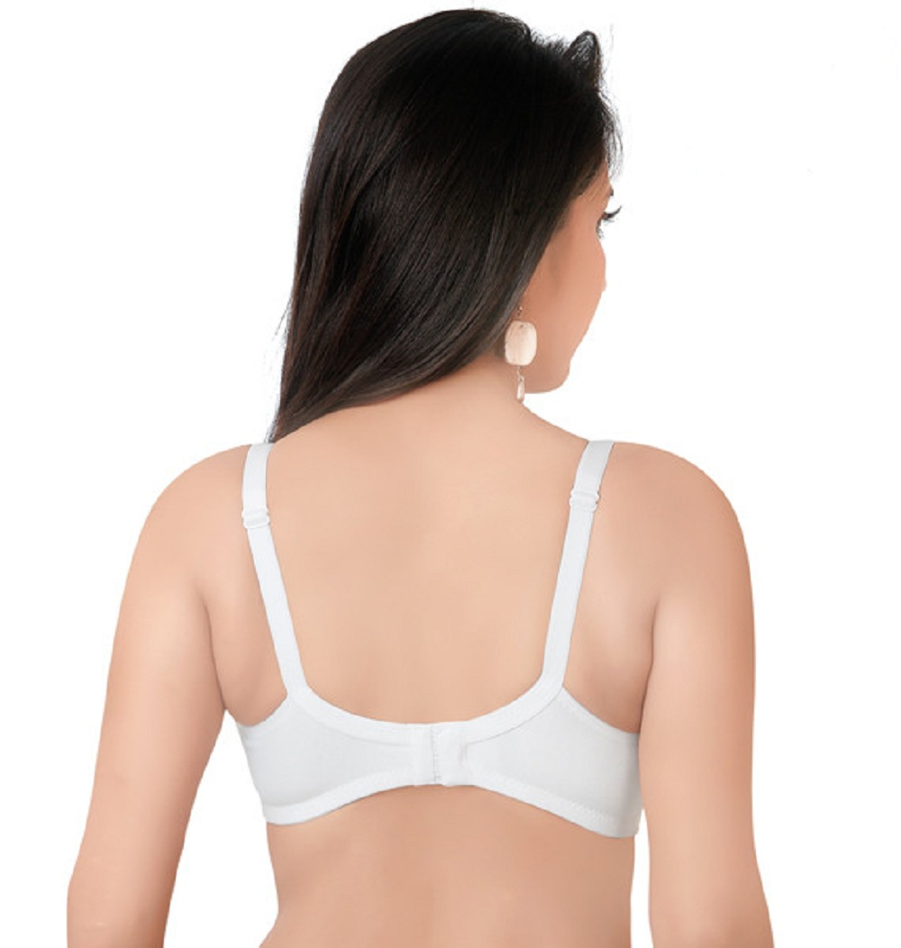 Softy Shena Minimizer Non Padded Multicolor Bra (Pack Of 1)